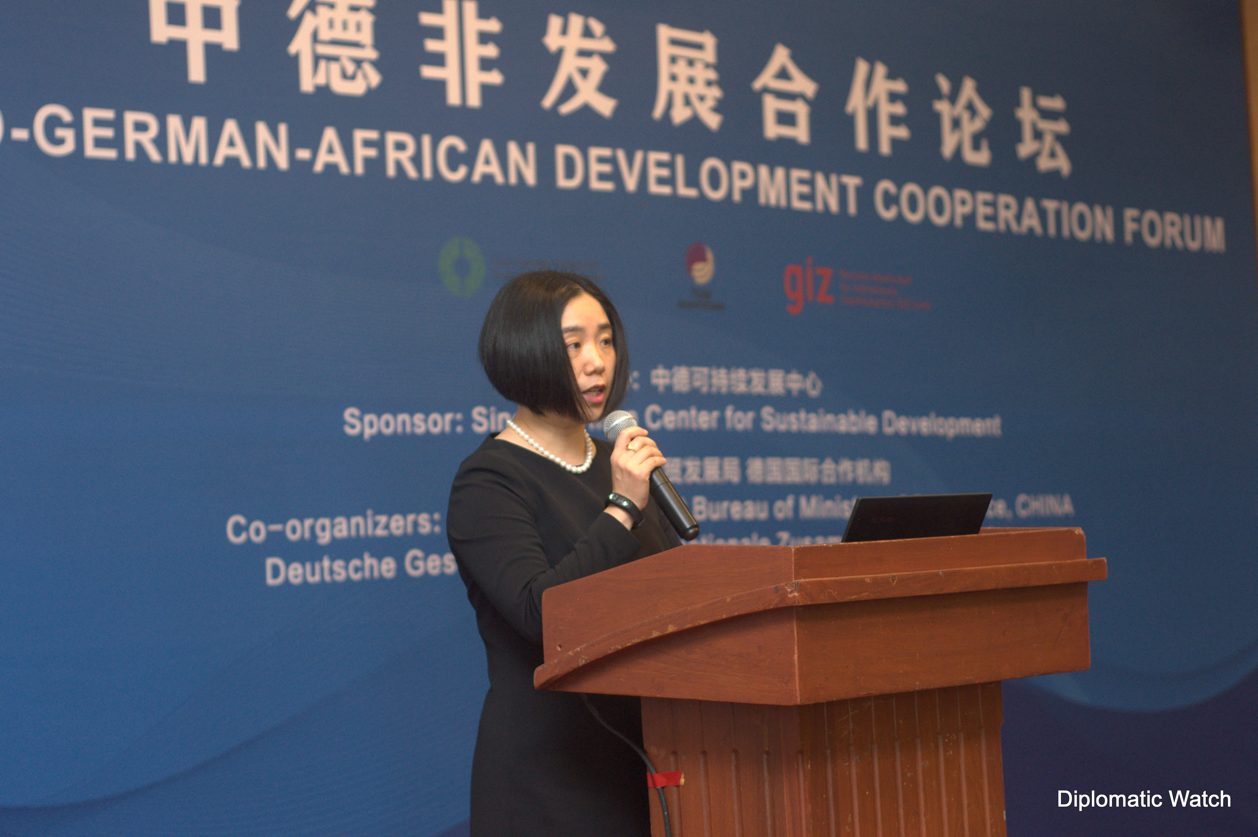 Opportunities for Germany-China-Africa cooperation under the G20