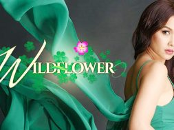 WILDFLOWER-on-StarTimes
