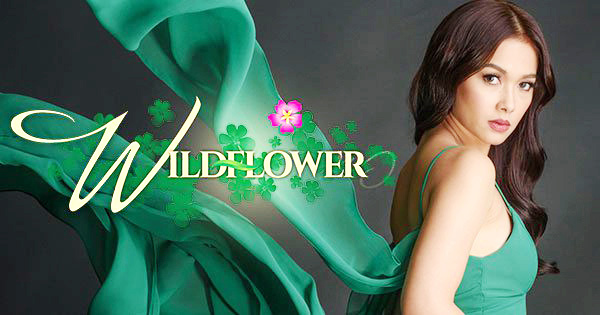 "Acclaimed Telenovela""Wildflower""Returns on StarTimes With Season 2"