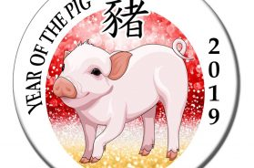 year_of_pig_2019_1024x1024